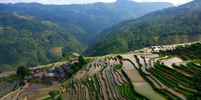 The Rice Terraces of Xijing Miao Village